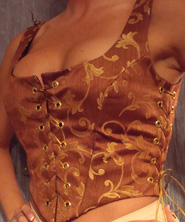 brown gold bodice